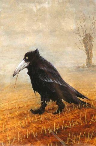 corvo-grano