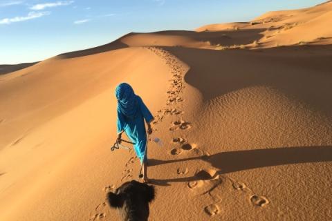 Guida-deserto