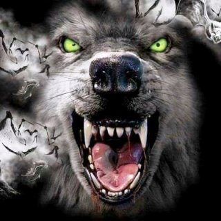 lupo famelico