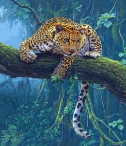 giaguaro2