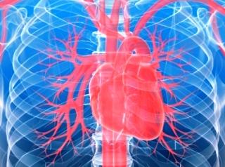 cuore-3.22