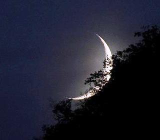 falce-luna-calante