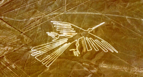 Nazca Lines,Condor