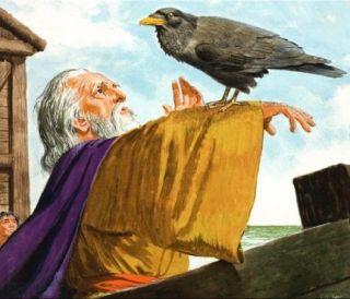 Noè-corvo