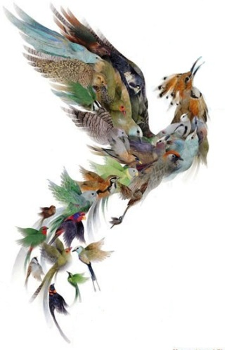 uccelli-Simorgh
