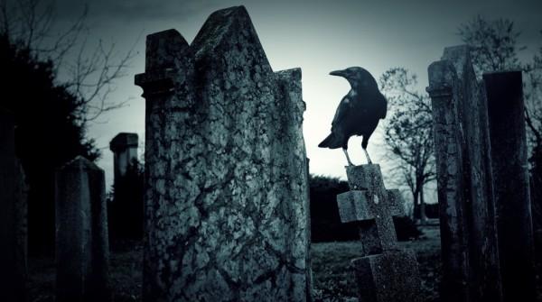 corvo-cimitero