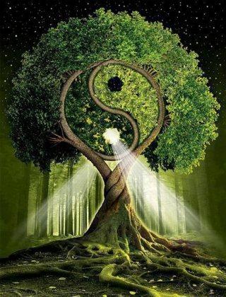 albero-disegno