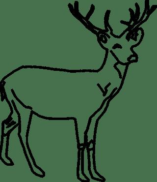 cerva-disegno