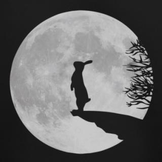 coniglio-luna