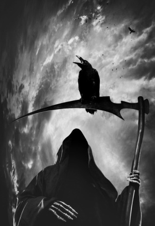 corvo-morte