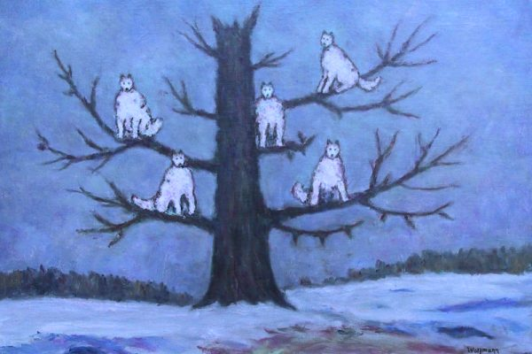 uomo-lupi-bianchi