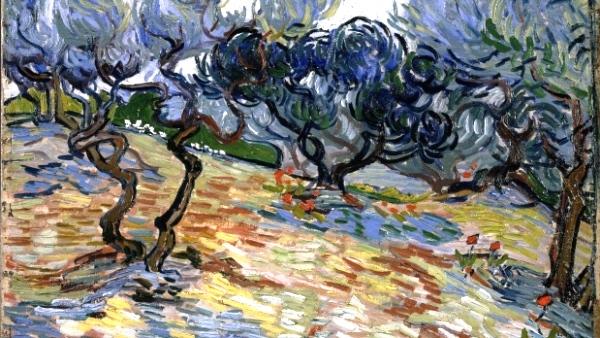 Van Gogh-ulivi