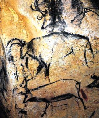 uro-renna-rupestri-Chauvet