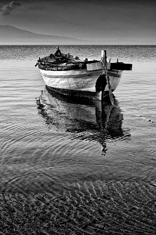 barca-bn