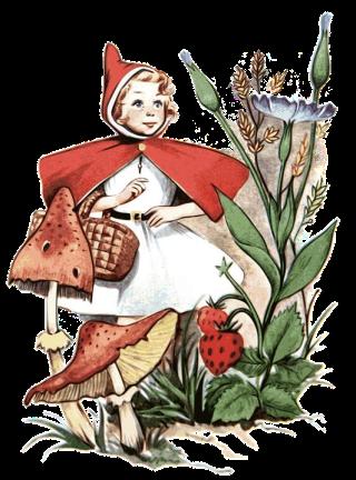 Cappuccetto-rosso-fiori