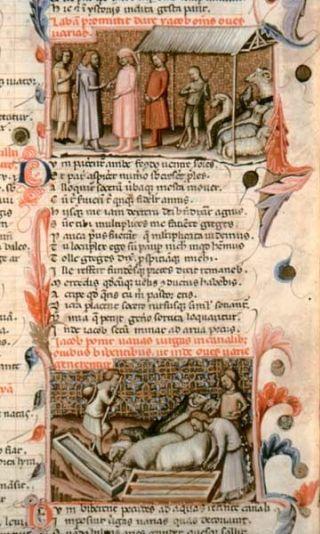 manoscritto-Gotofredo