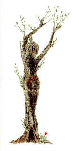 ninfa-albero