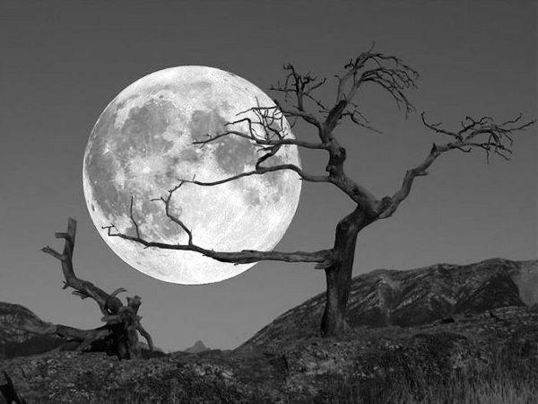 notte-luna