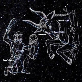 Orione-Toro-figurato