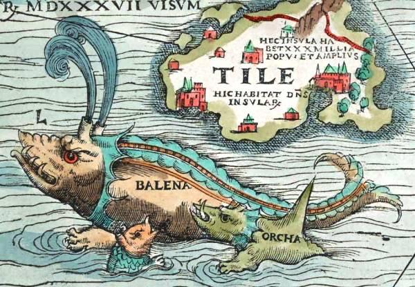 Tile-balena-orca