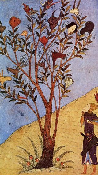 Alessandro-foglie