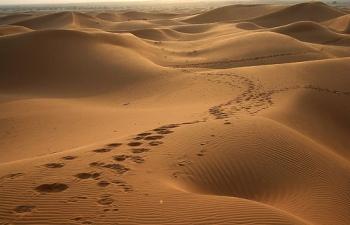 deserto-orme