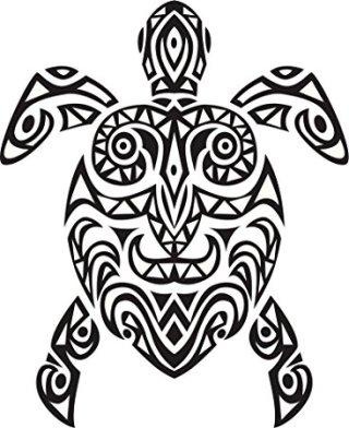 tartaruga-disegno