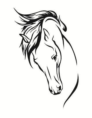 testa-cavallo-disegno