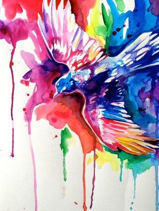 arcobaleno-uccello
