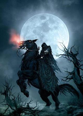 cavaliere-nero-paint