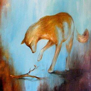 coyote-ramo