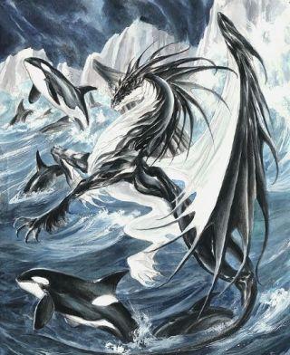 drago-marino