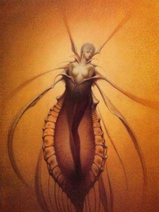 Kusk-termite