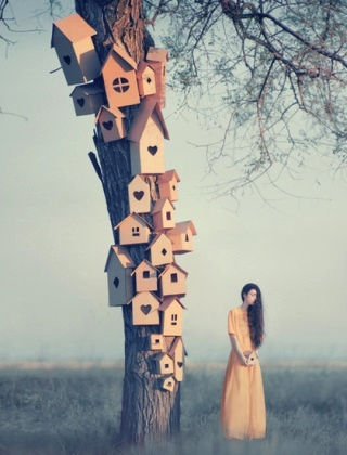 surreal-albero-case