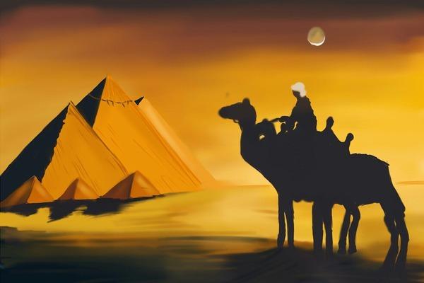 cammelli-piramidi