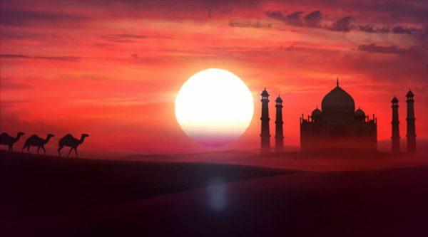 cammelli-tramonto