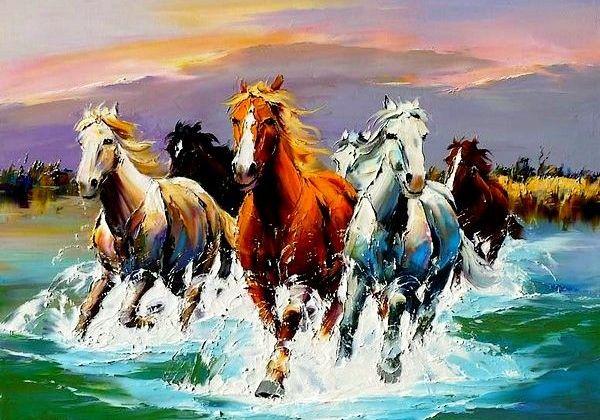 cavalli-fiume