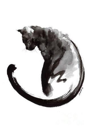 gatto-nero-china