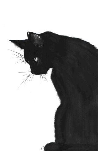 gatto-nero-disegno
