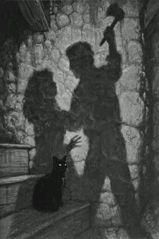 gatto-nero-ombre