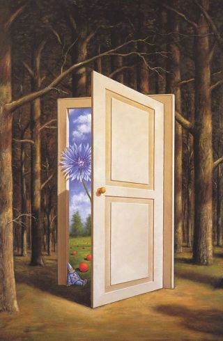 surreal-bosco-porta