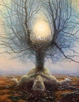 surreal-luce-albero