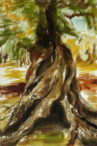 albero-cavo-paint