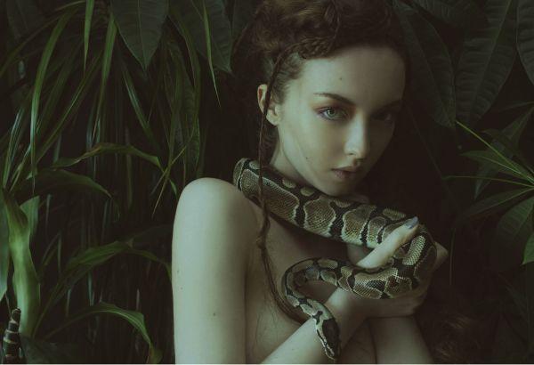 Eva-serpente