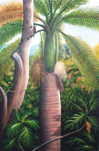 palma-Puertorico