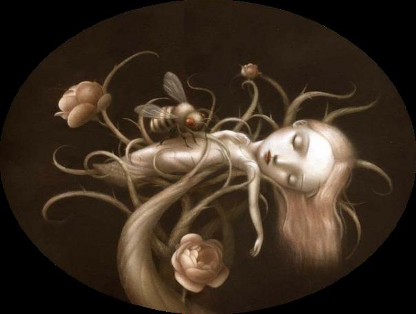 bambolina-rizoma