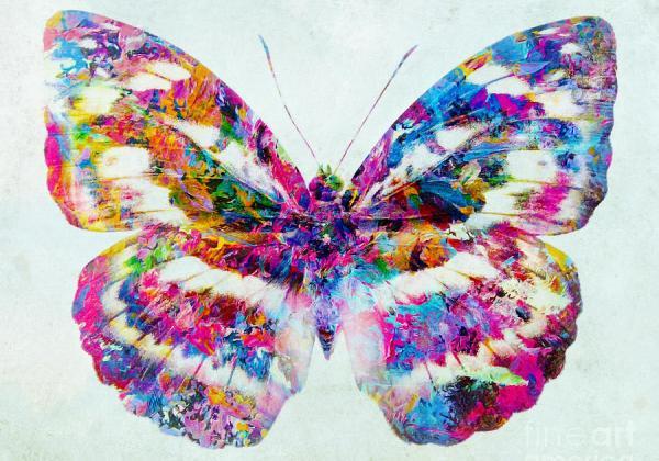 farfalla-variopinta