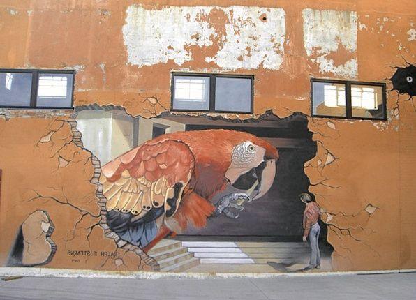 murale-pappagallo