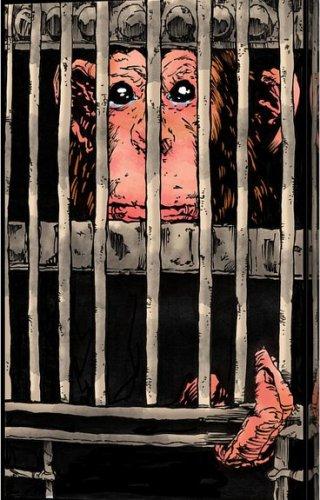 scimmia-gabbia