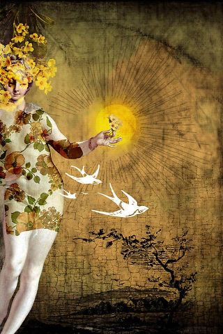 surreal-donna-sole-uccelli